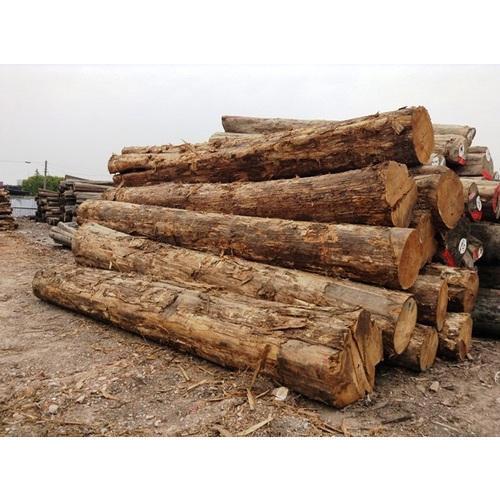 C P Teak Wood